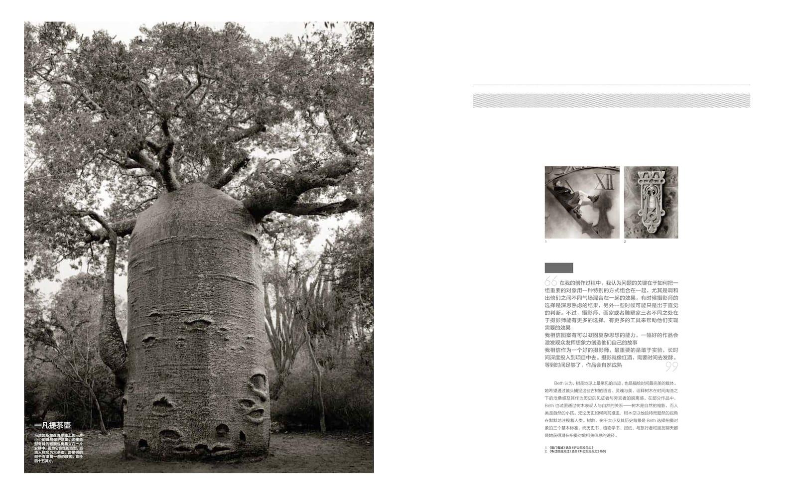 Bazaar Art (China)   March 2012-7