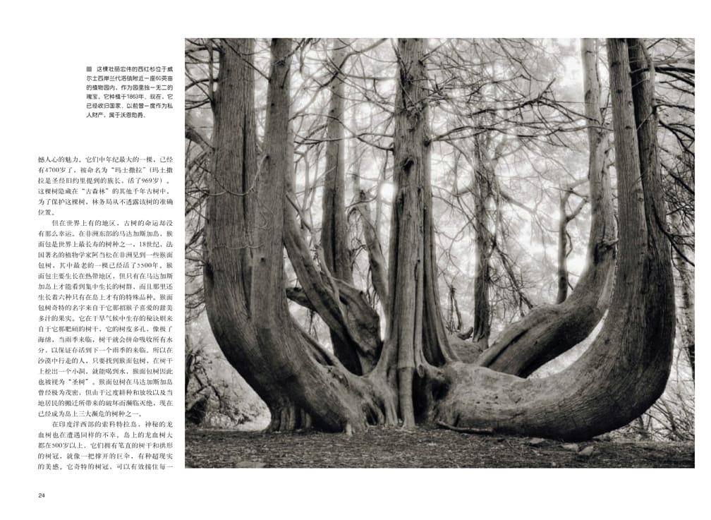 Civilization (China) | April 2013 p 24-25
