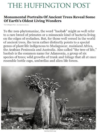 Huffington Post | December 2014
