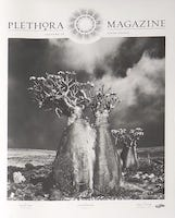 Plethora Issue 3 (Copenhagen) | Summer 2015