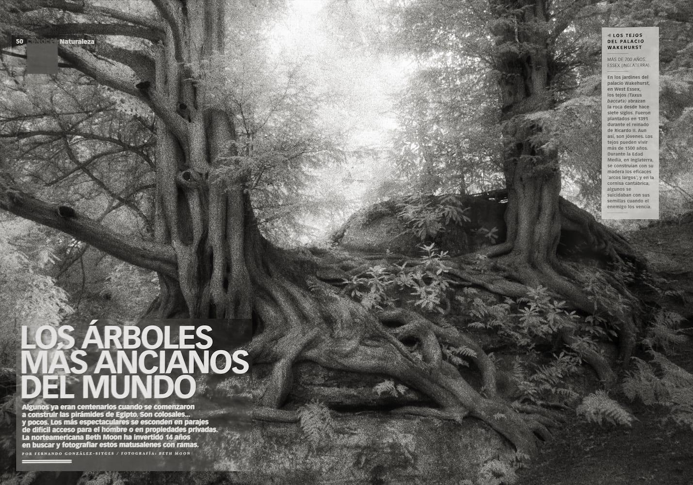 XL Semanal (Spain) | Mar 2015 p 50-51