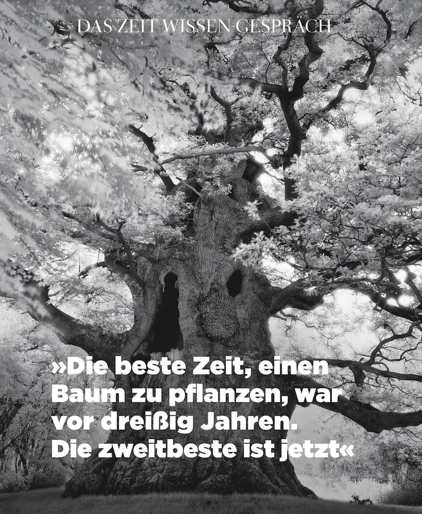 Zeitwissen   Jan-Feb 2018 p 36